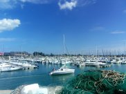 alignement des bateaux dans le port de St Vaast la Hougue (50)
