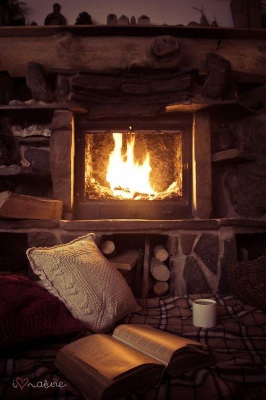 feu de bois_hiver