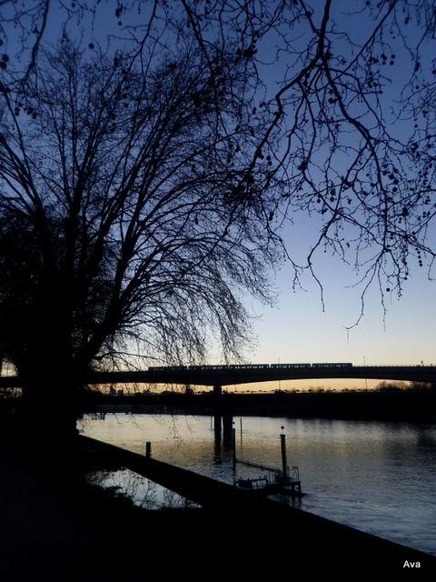 endroit_préféré, bord_de_Seine