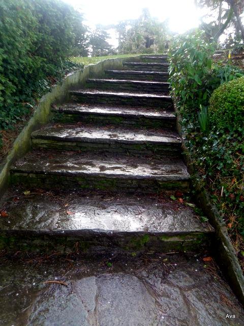 Avezvous l'esprit d'escalier ?  Mon beau manoir ~ Manoir Bois De Boulogne