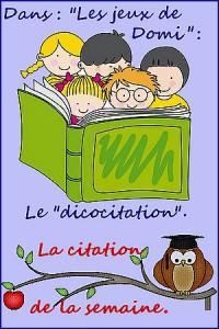 citation-Domi