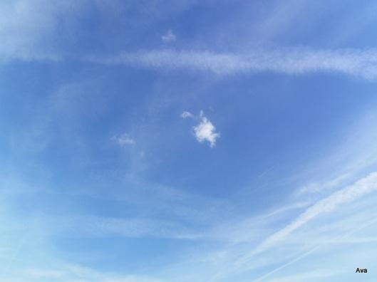 ciel, bleu, nuage