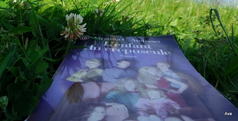 lire, lecture, herbe