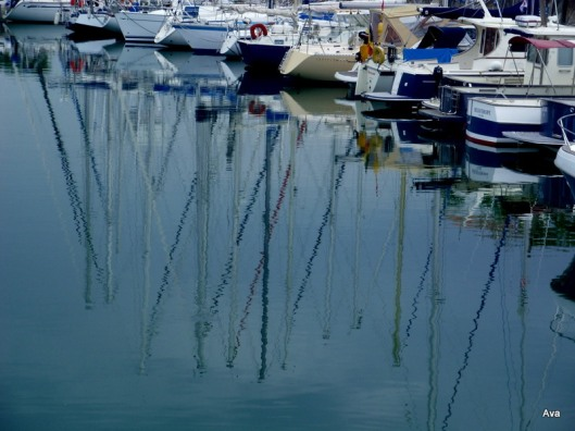 masts in the water