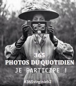 365 photos du quotidien
