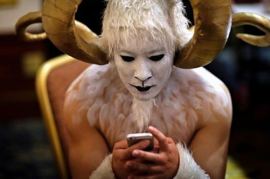 chèvre mouton