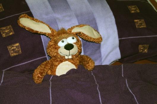 stuffed-animal-240695_1280