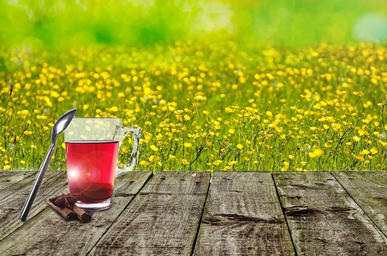 spring-315248_1280