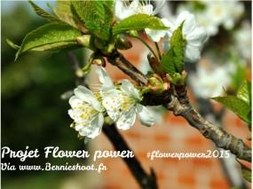 http://www.bernieshoot.fr/2015/08/aout-a-rendez-vous-avec-flowerpower2015.html