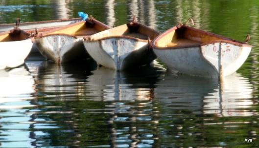 Barques du bois de boulogne