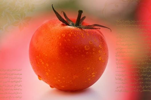tomato-587719_1280