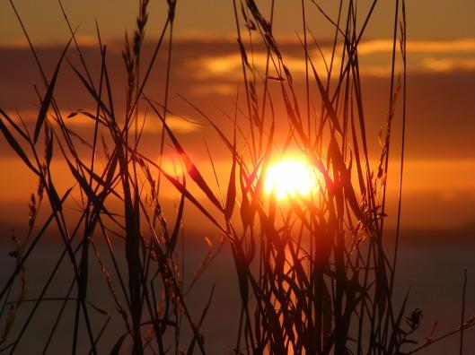 sunset-657148_1280