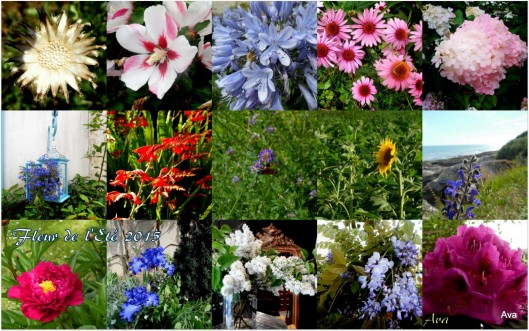 recap flower power