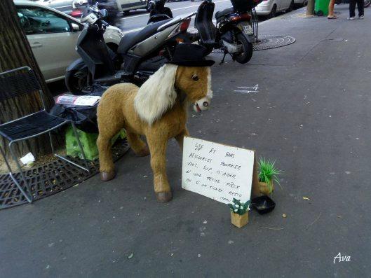 poney sdf