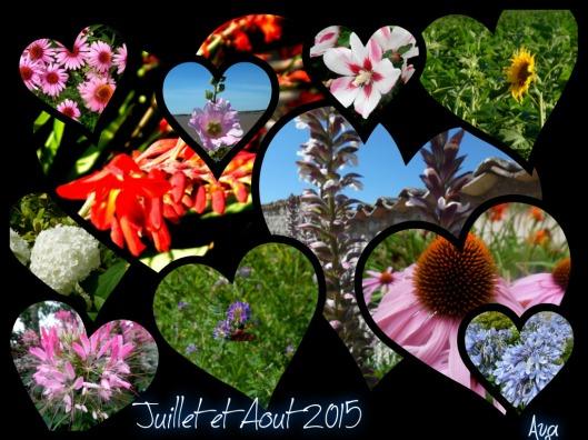 juillet et août 2015 flower power 2015
