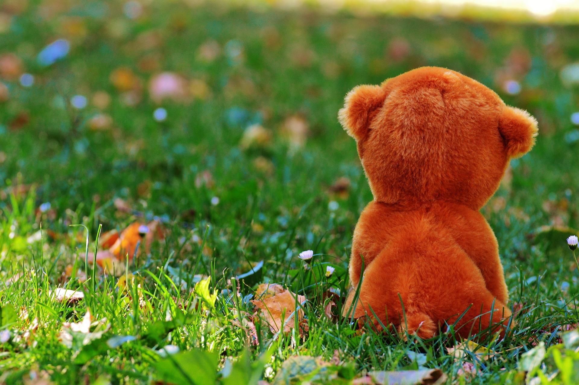teddy-bear-861061_1920
