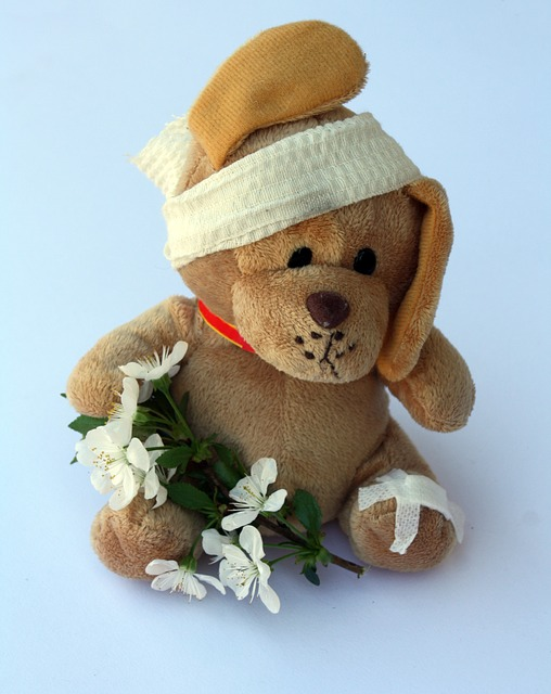 teddy-242871_640
