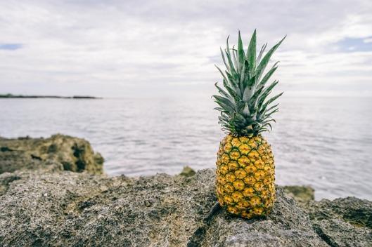 pineapple-1149631_640