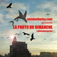 anteketborka.com_photo_dimanche_2016