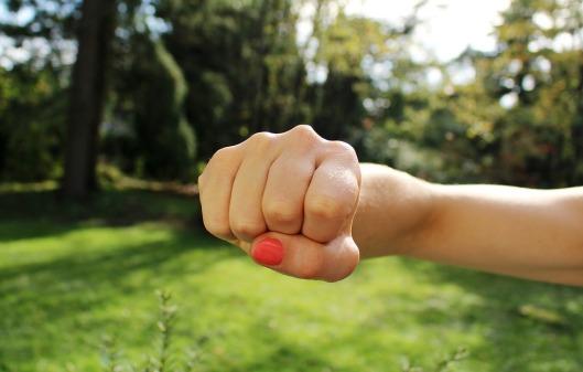 fist-bump-1195446_960_720