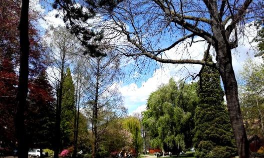 parc avril