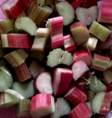 rhubarbe, tarte in process