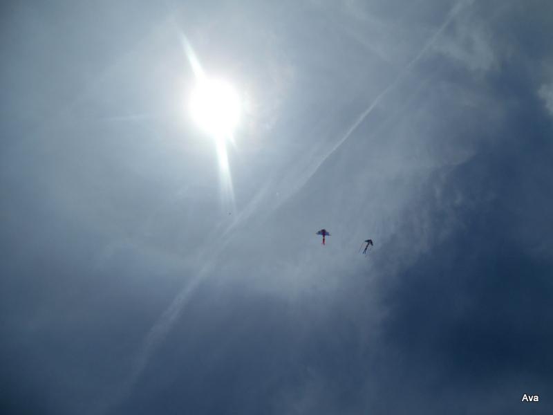 cerfs-volants dans le ciel