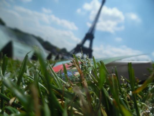 lire dans l'herbe