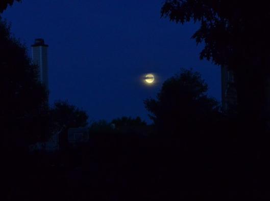 night-175851_640
