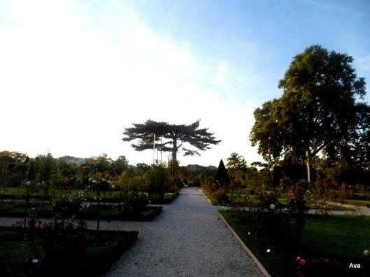 allees-de-la-roseraie-du-parc-de-bagatelle