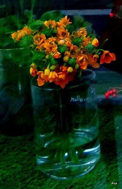 fleur grand mère