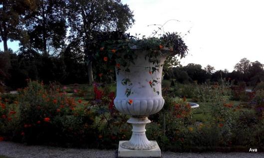 vasque-avec-fleurs-orange