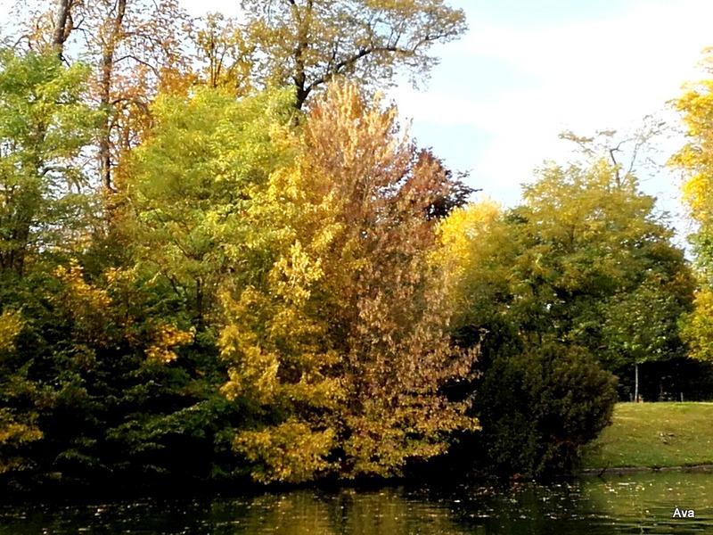 automne-au-bois-de-boulogne