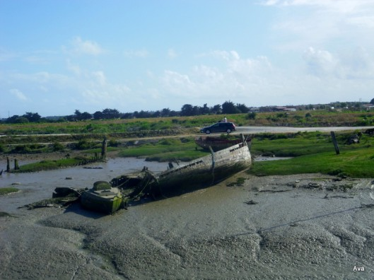 dead-boats