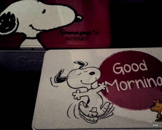 boites-a-biscuits-snoopy