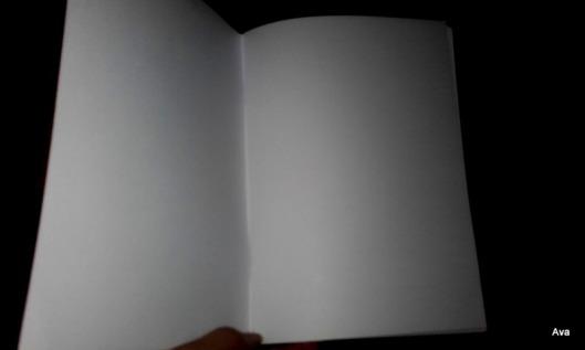 livre-blanc
