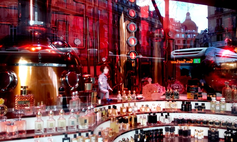 shop-windows-paris-3