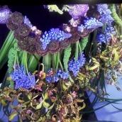 fleurs-sur-petite-robe-noir-3