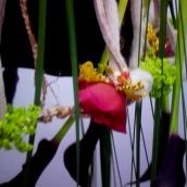 fleurs-sur-petite-robe-noire-9