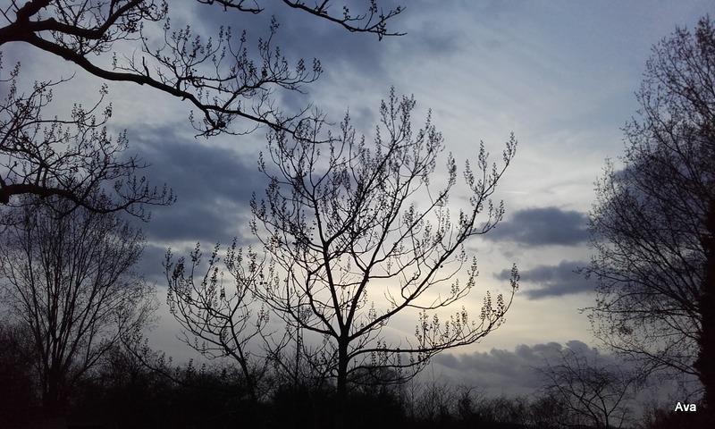 ciel-de-printemps